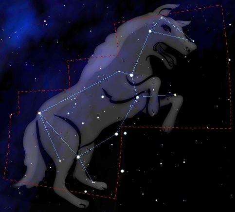 Loup (latoileanolwenn.blogspot.com)
