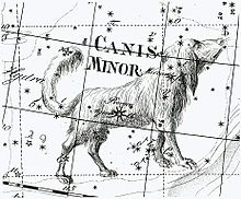 canis minor (en.wikipedia.org)