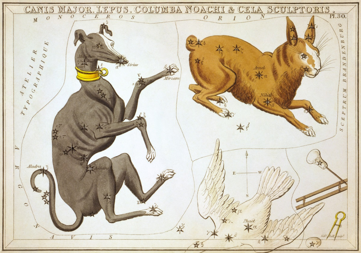 grand chien (universetoday.com)