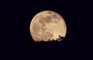 super lune 08.04.20-C.Guerrini